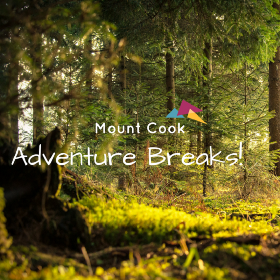 Bank Holiday Adventure Break with Glamping, High Ropes & Zip Wire