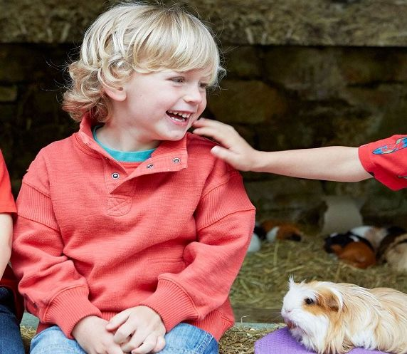 Half-term in the farmyard and playground