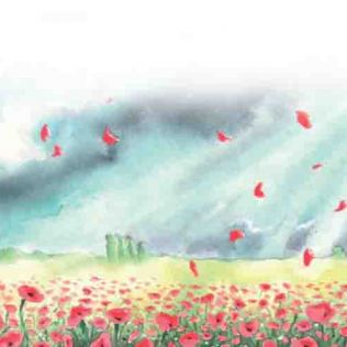 Where the Poppies now Grow: Tots Make & Do - 9 June